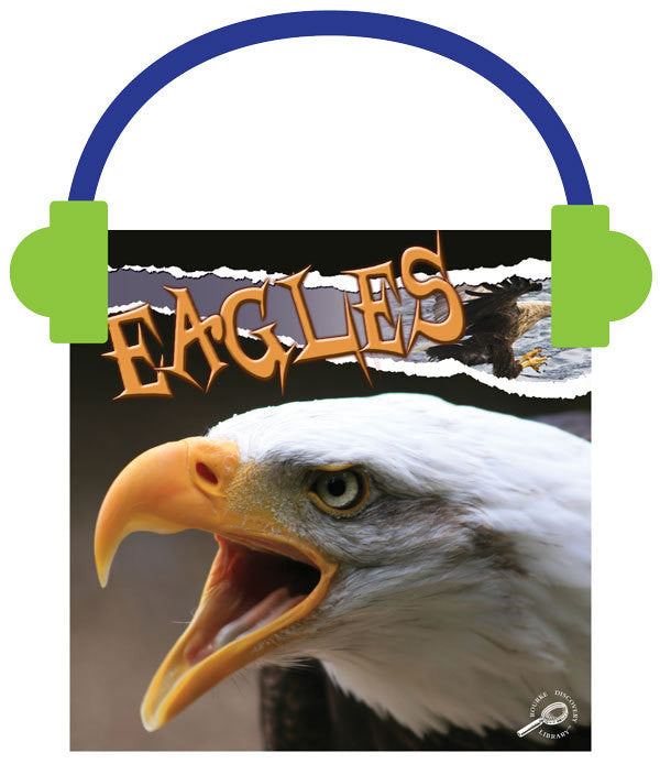 2013 - Eagles (Audio File)