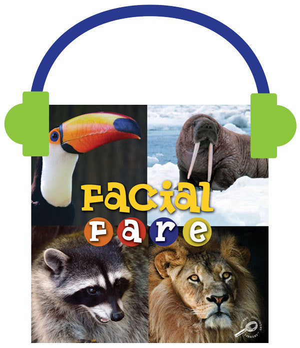 2013 - Facial Fare (Audio File)