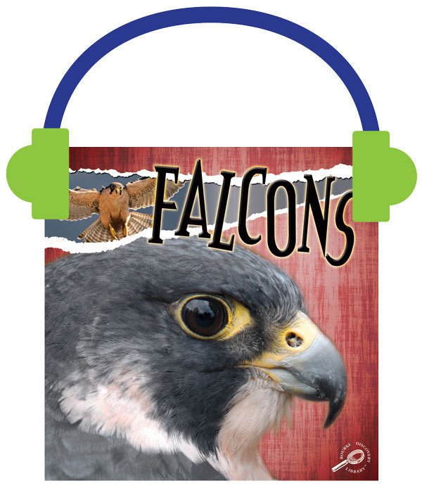 2013 - Falcons (Audio File)