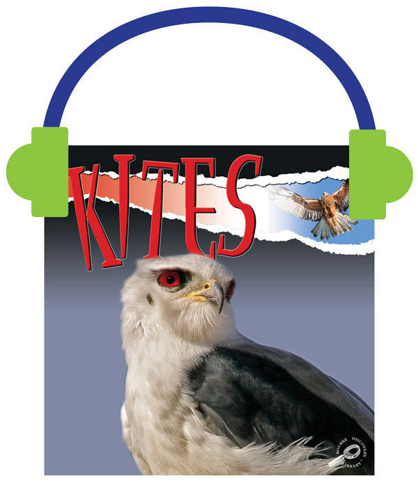2013 - Kites (Audio File)