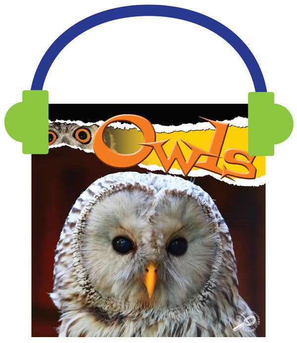 2013 - Owls (Audio File)