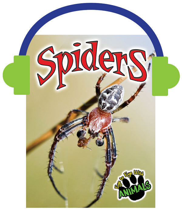 2013 - Spiders (Audio File)