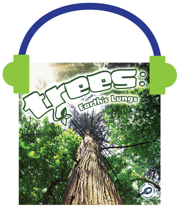 2013 - Trees (Audio File)