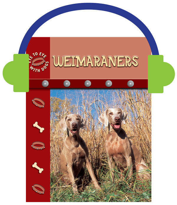 2013 - Weimaraners (Audio File)