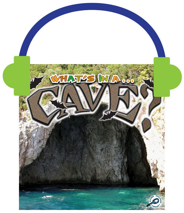 2013 - Cave? (Audio File)