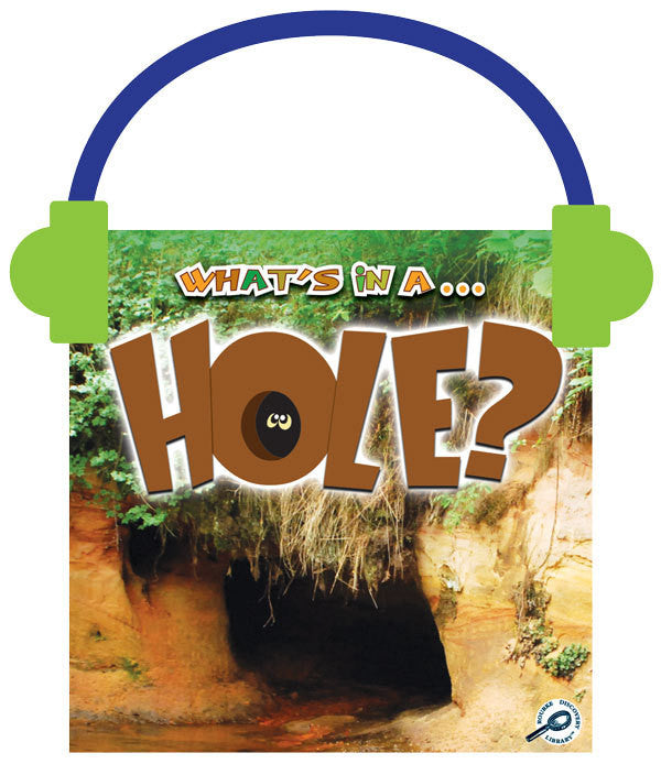 2013 - Hole? (Audio File)