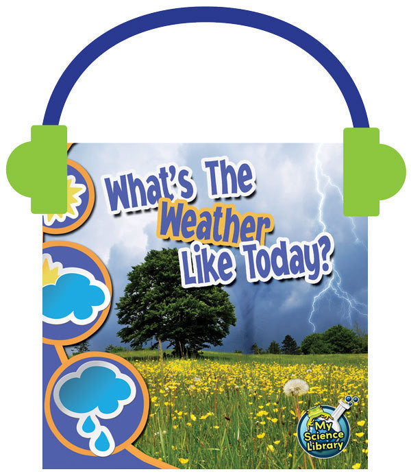 2013 - What's the Weather Like Today? (Audio File)