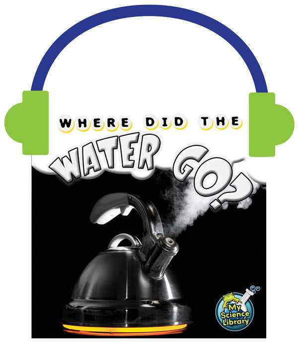 2013 - Where Did the Water Go? (Audio File)