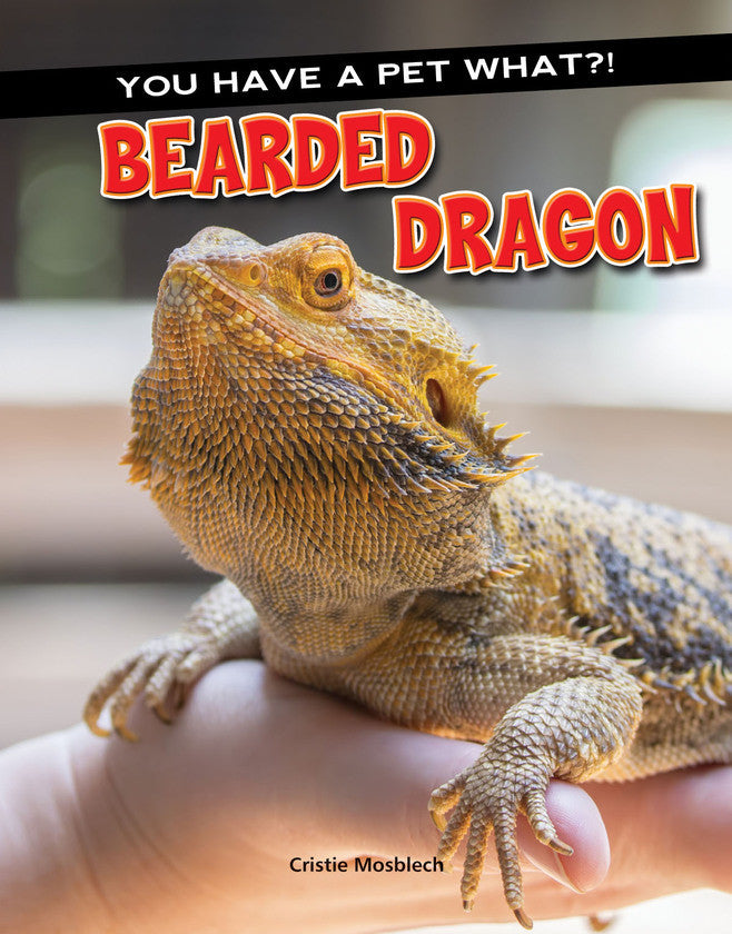 2017 - Bearded Dragon (Hardback)