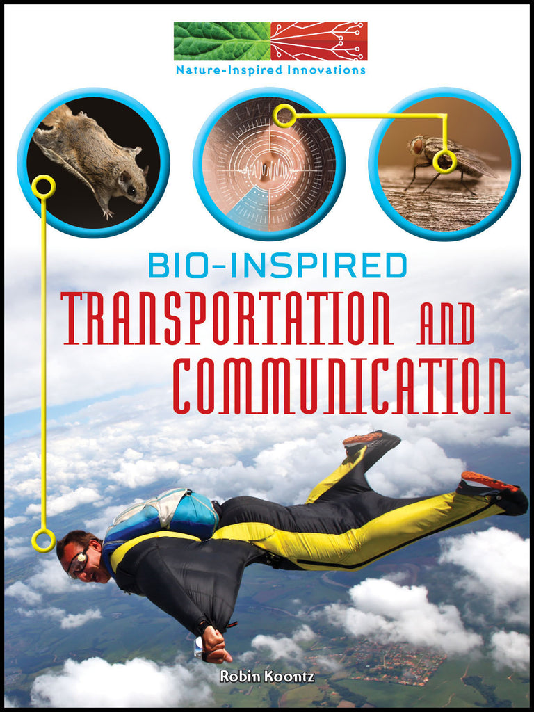 2019 - Bio-Inspired Transportation and Communication (eBook)