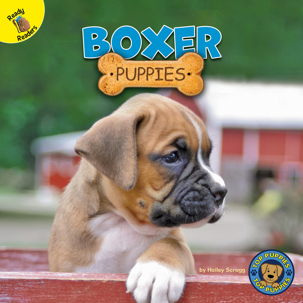 2020 - Boxer Puppies (Hardback)