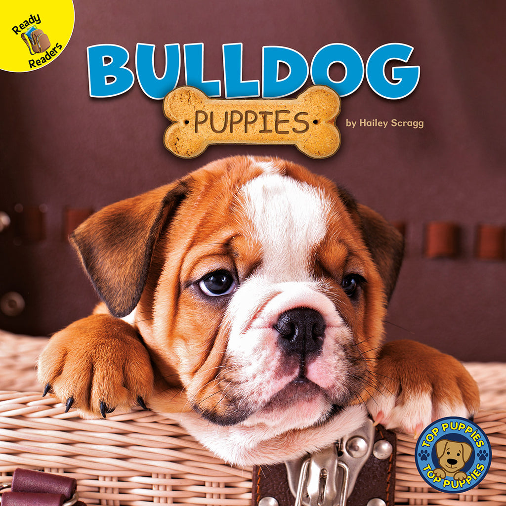 2020 - Bulldog Puppies (eBook)