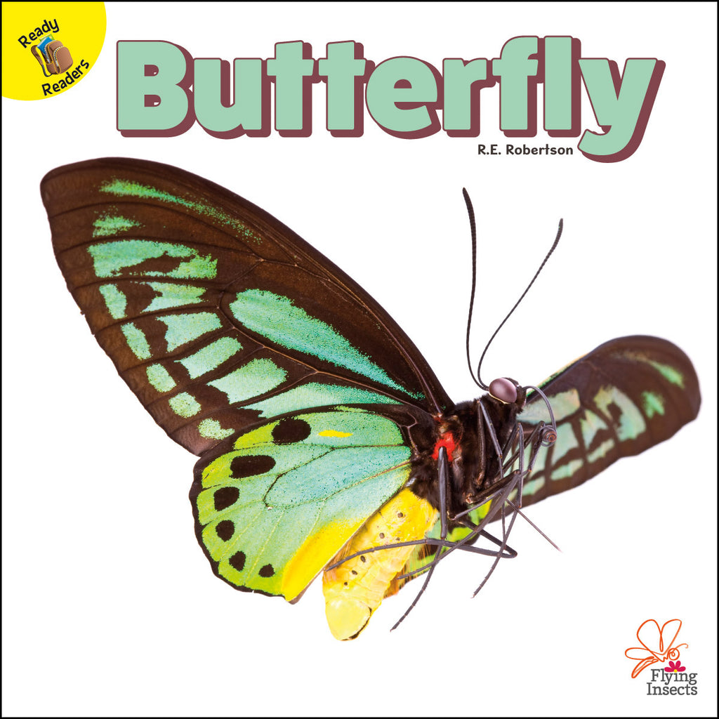 2020 - Butterfly (eBook)