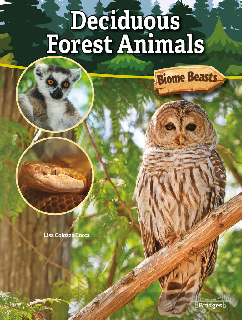 2020 - Deciduous Forest Animals (Hardback)