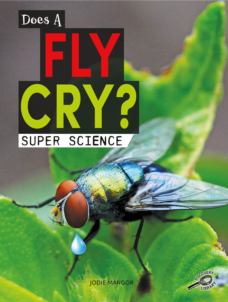 2020 - Does a Fly Cry? (eBook)