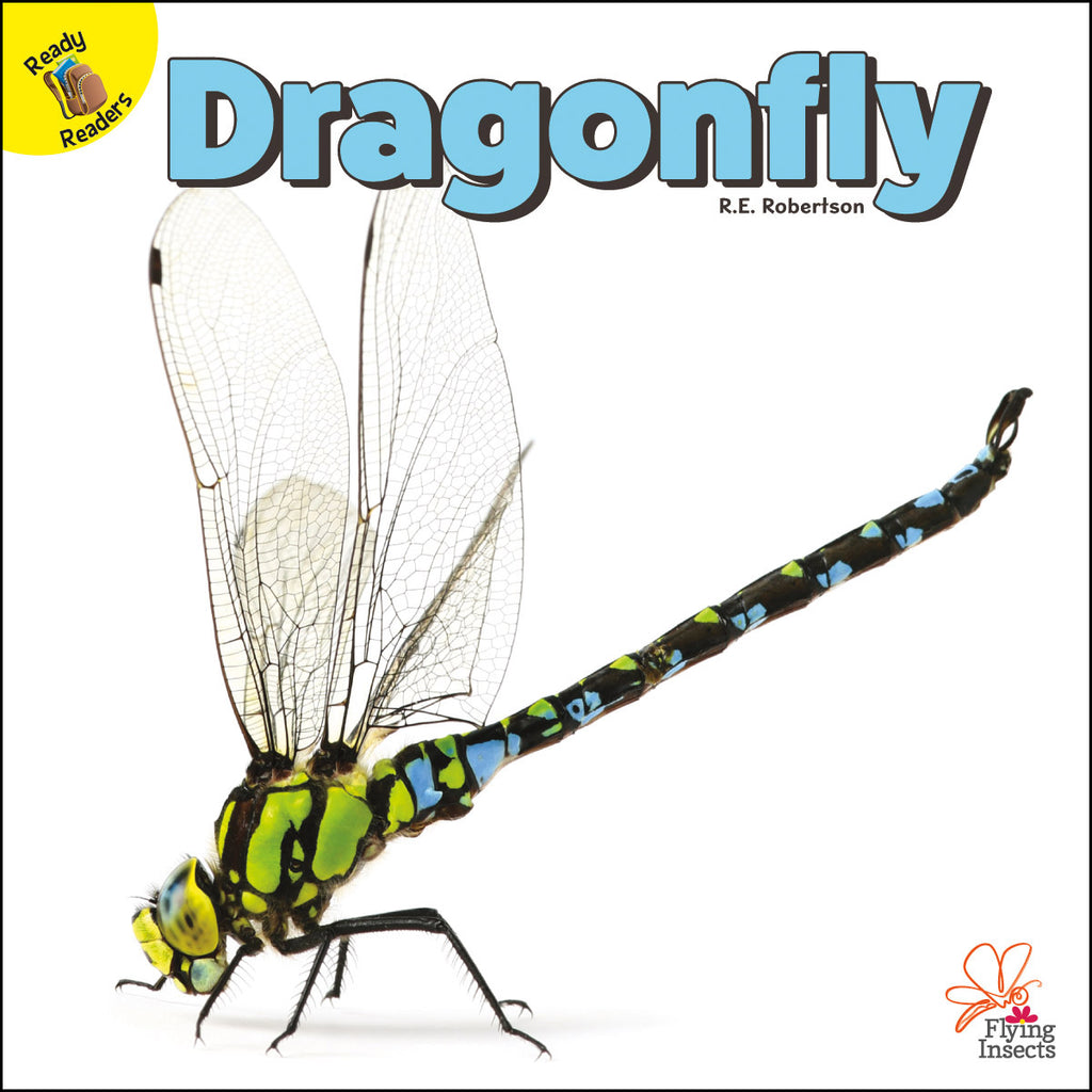 2020 - Dragonfly (Paperback)
