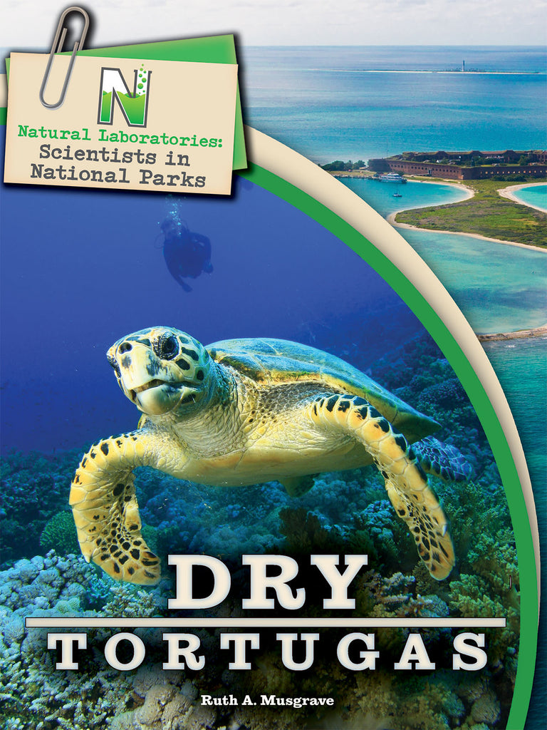 2019 - Dry Tortugas (eBook)