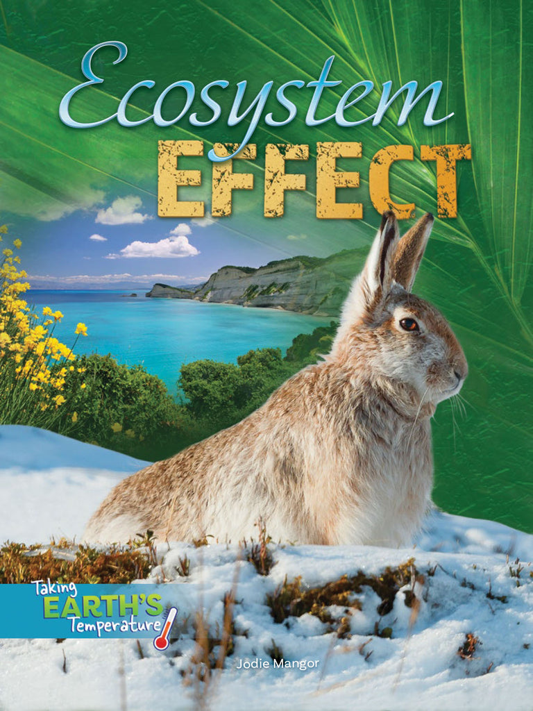 2019 - Ecosystem Effect (Paperback)