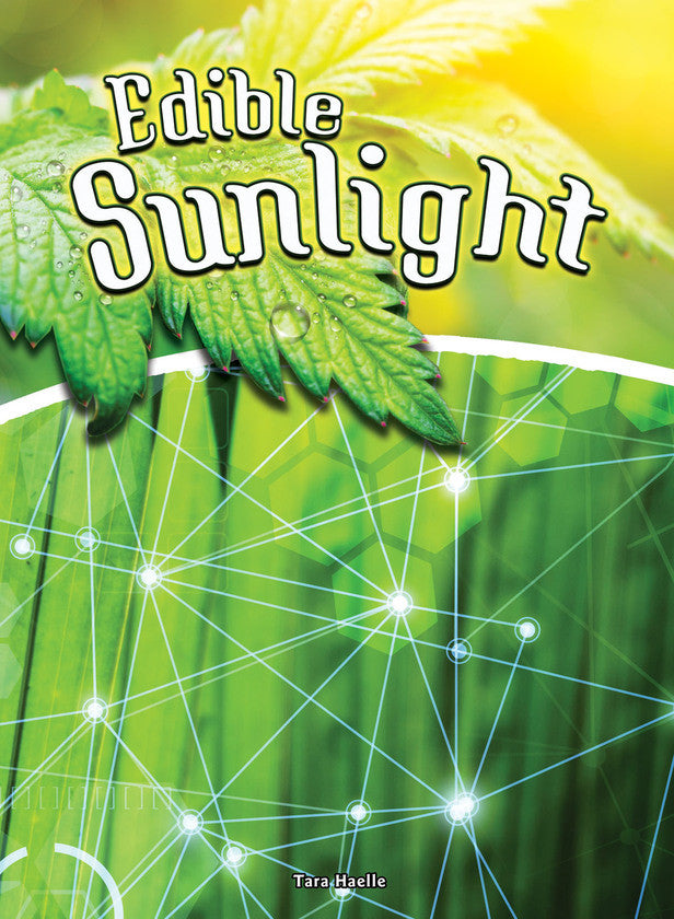2016 - Edible Sunlight (Hardback)