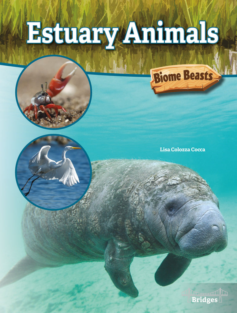 2020 - Estuary Animals (eBook)