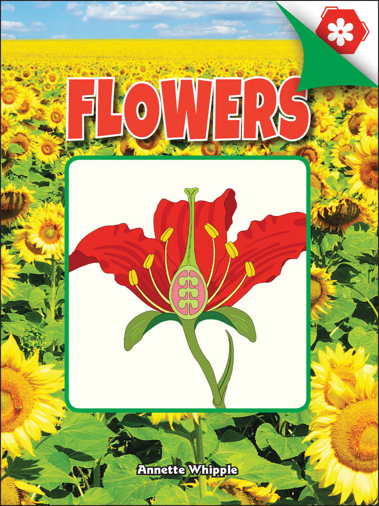 2018 - Flowers (eBook)