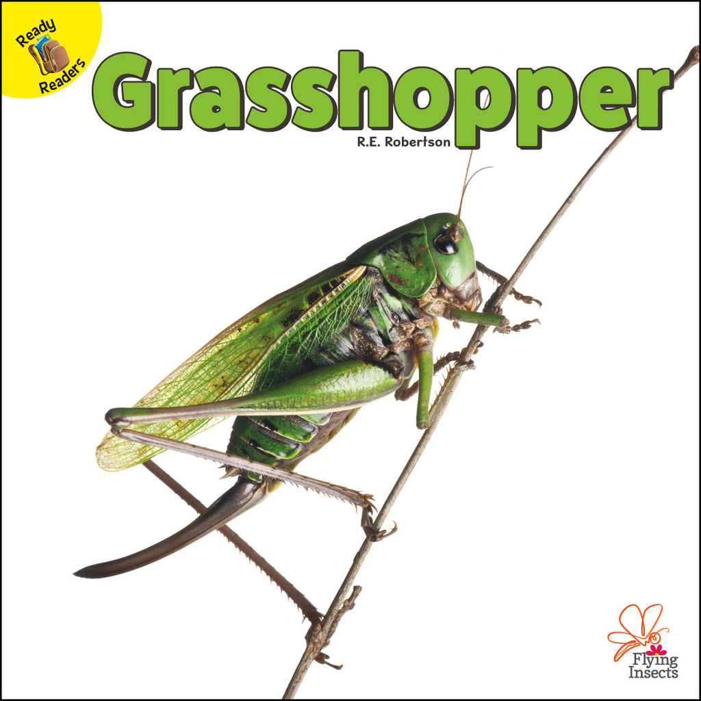 2020 - Grasshopper (eBook)