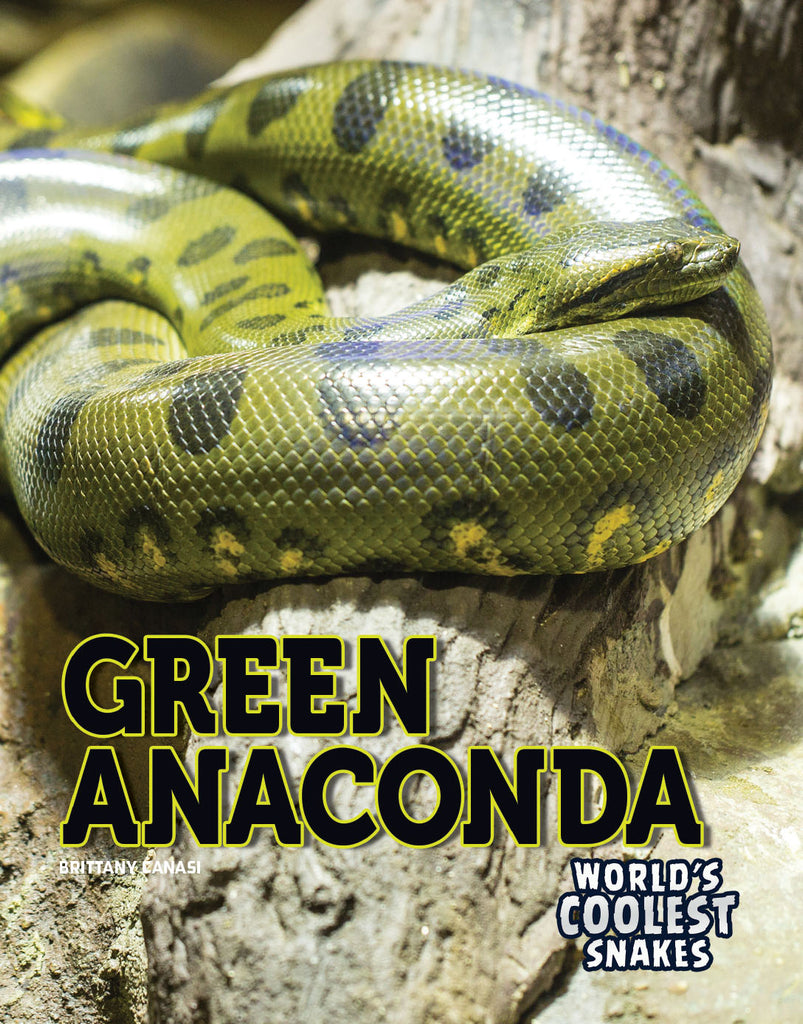 2019 - Green Anaconda (Hardback)