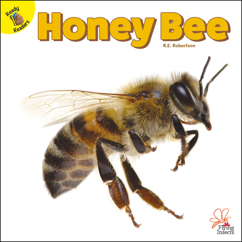 2020 - Honey Bee (Paperback)