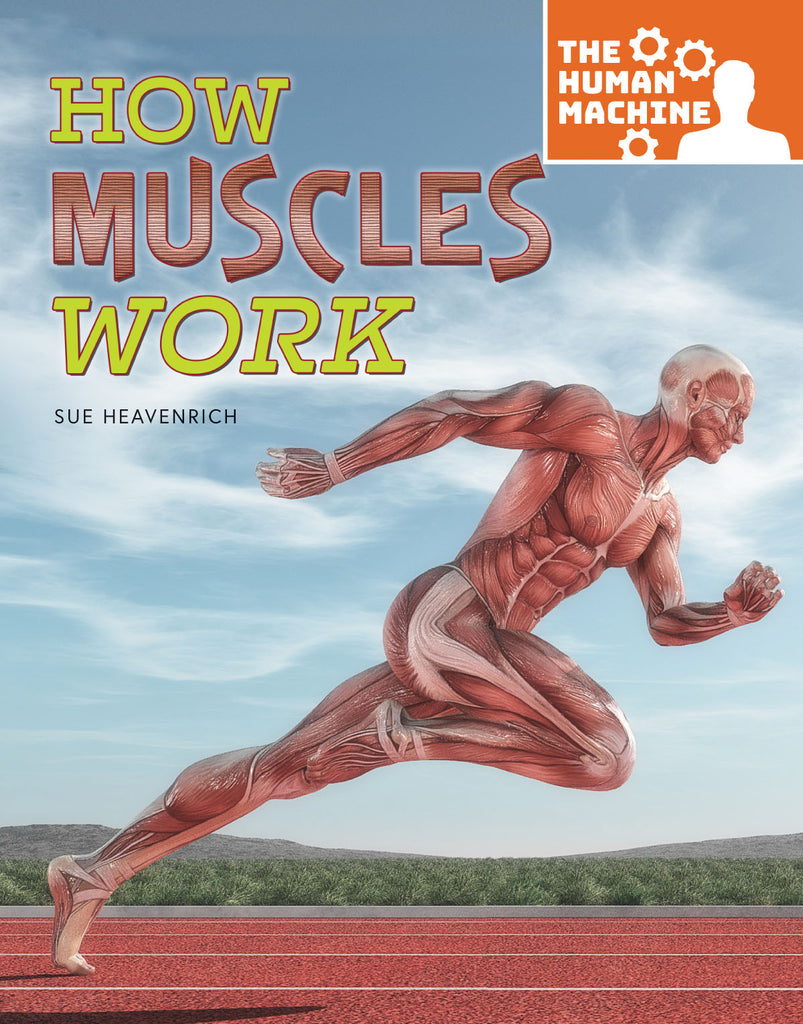 2019 - How Muscles Work (Hardback)