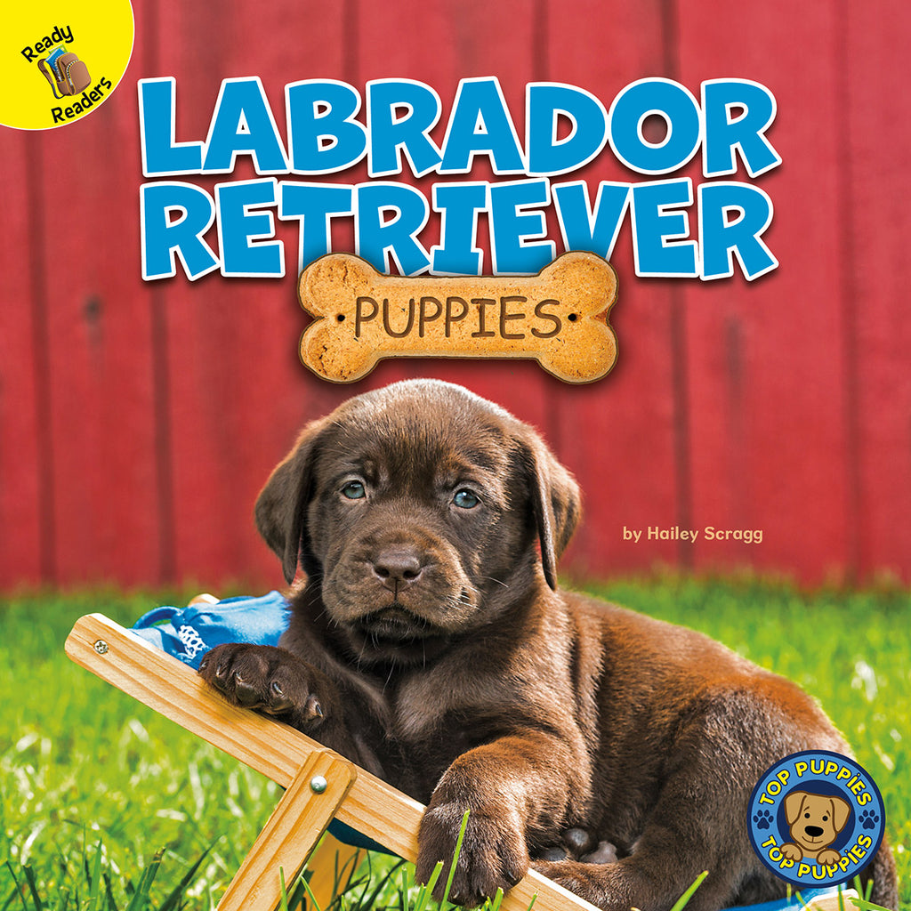 2020 - Labrador Retriever Puppies (Hardback)
