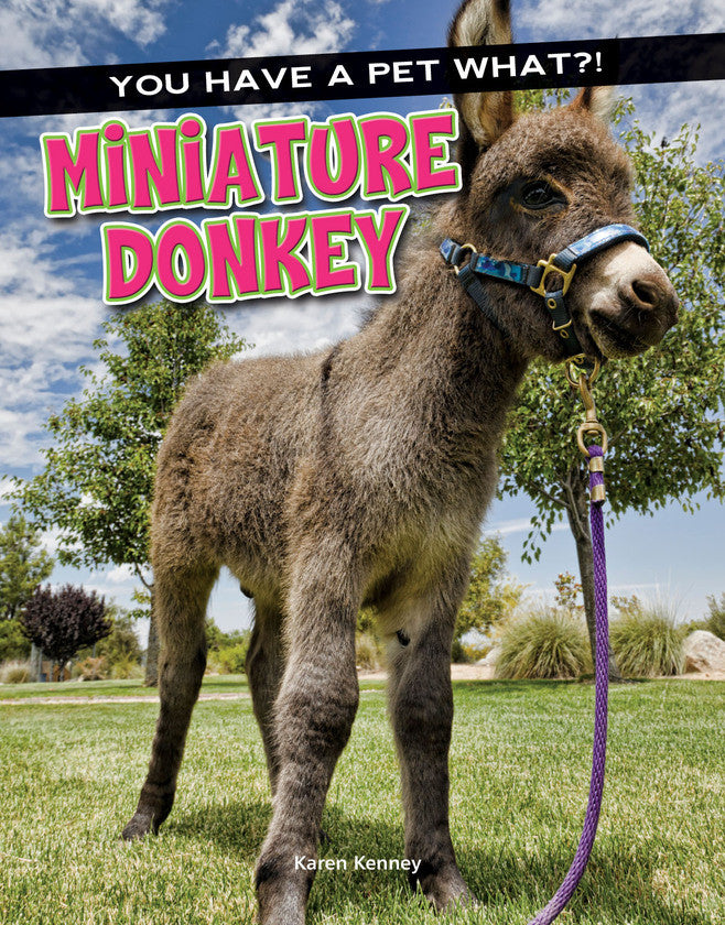 2017 - Miniature Donkey (eBook)