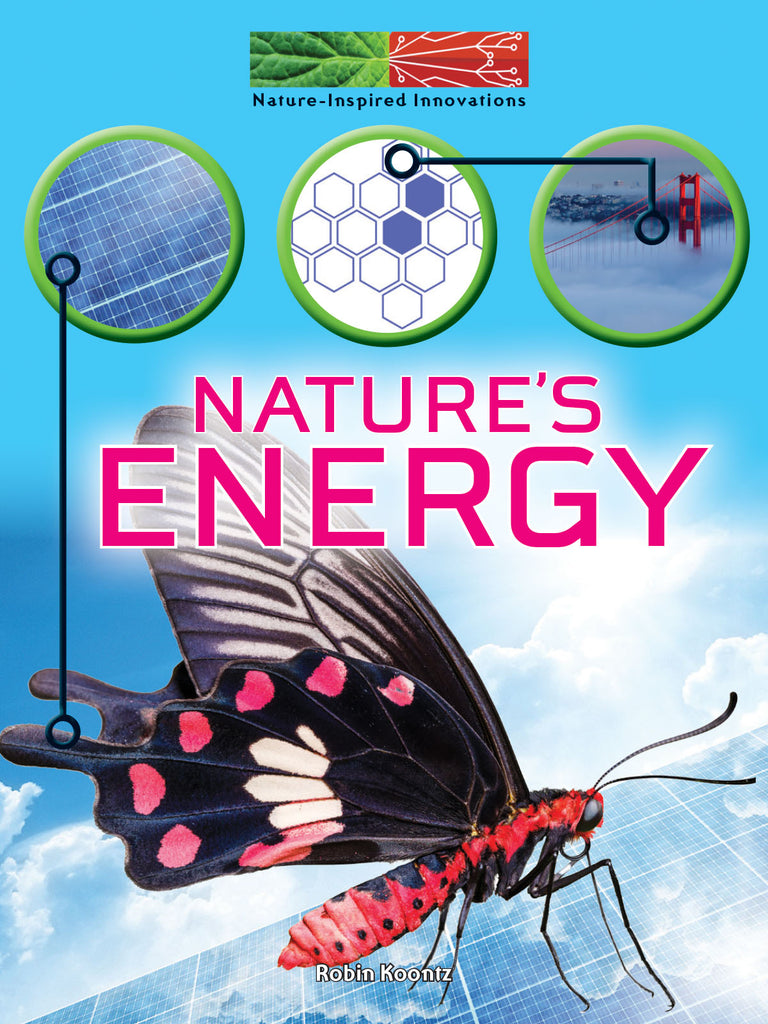 2019 - Nature's Energy (Paperback)