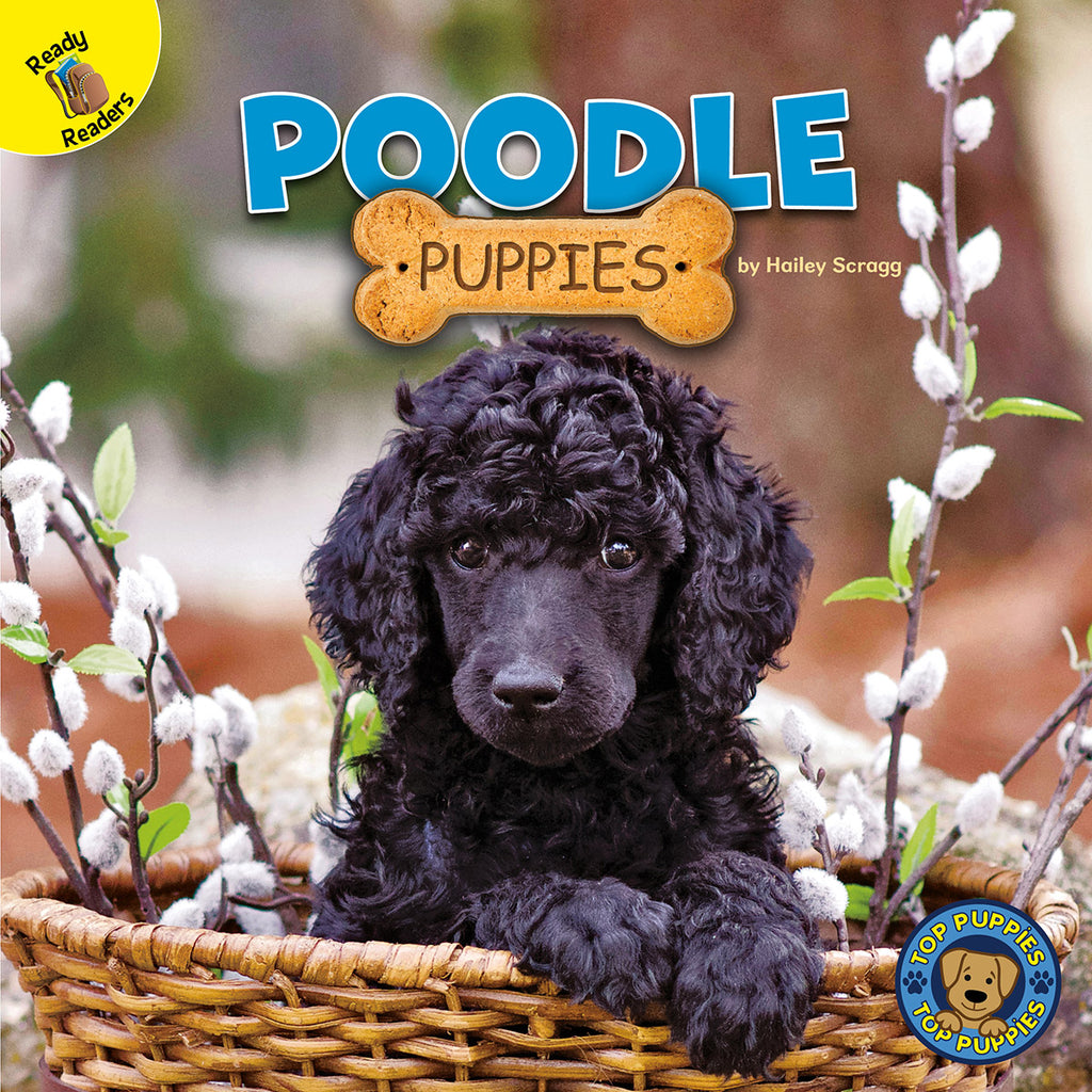 2020 - Poodle Puppies (eBook)