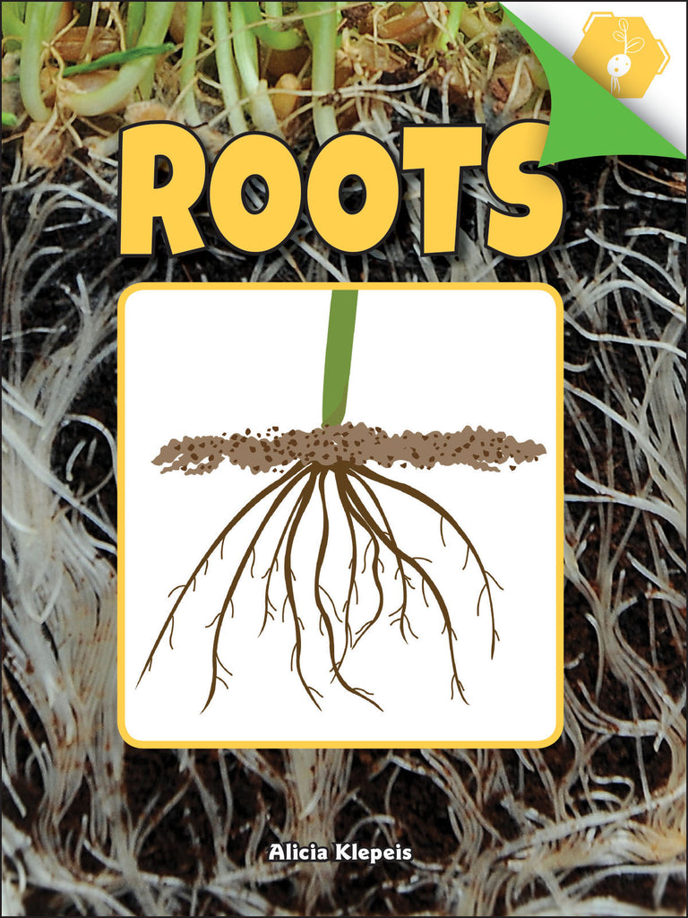 2018 - Roots (Paperback)