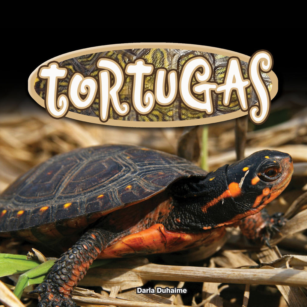 2018 - Tortugas (Turtles) (Hardback)