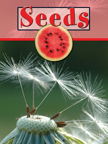 2008 - Seeds (eBook)