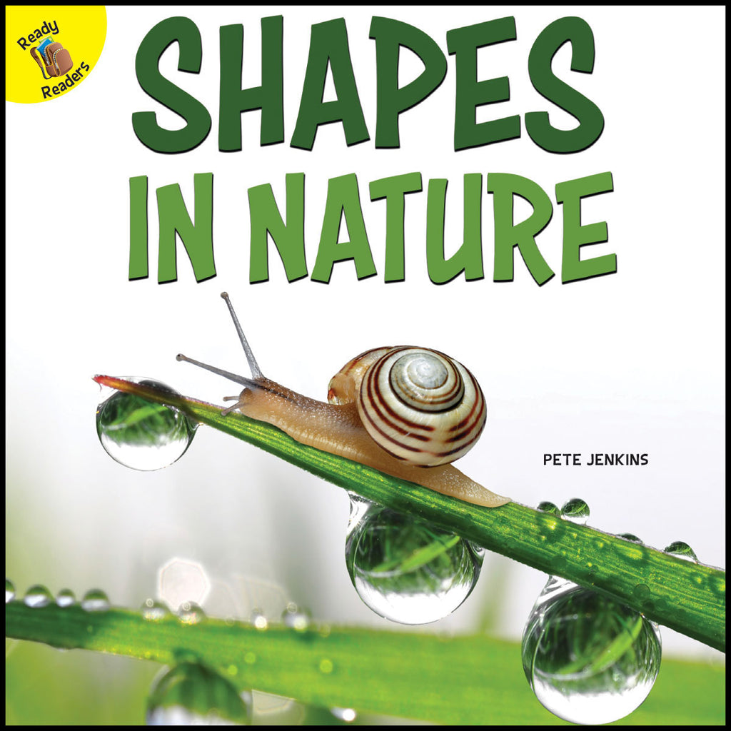 2019 - Shapes in Nature (Paperback)