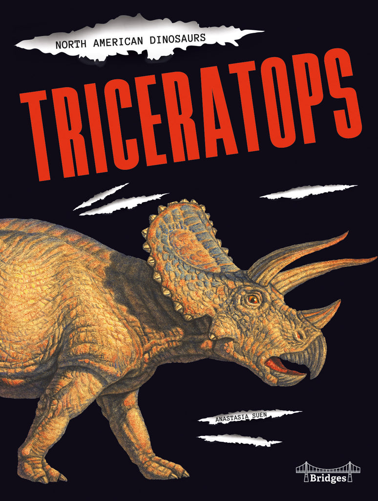 2020 - Triceratops (eBook)