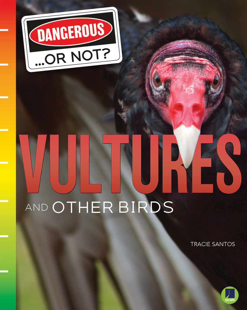 2021 - Vultures and Other Birds (eBook)