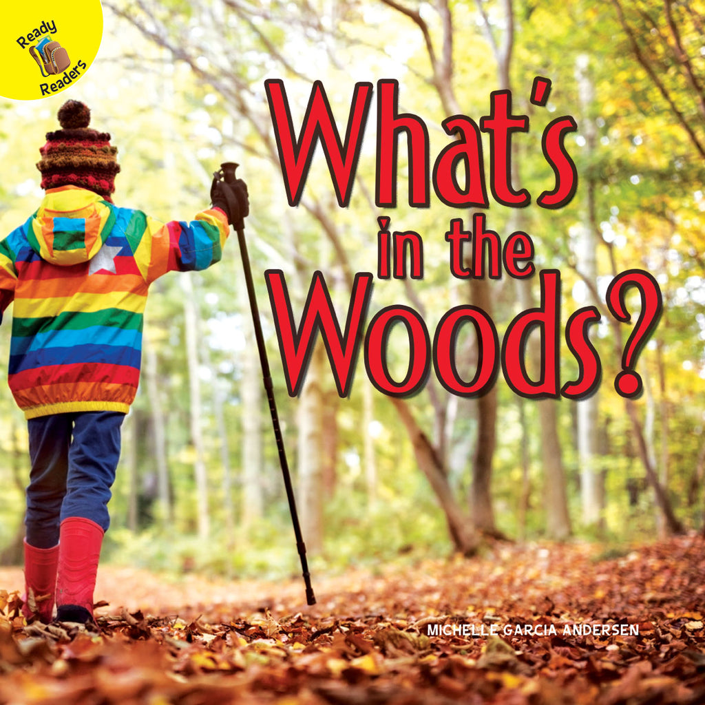 2019 - What's in the Woods? (Hardback)