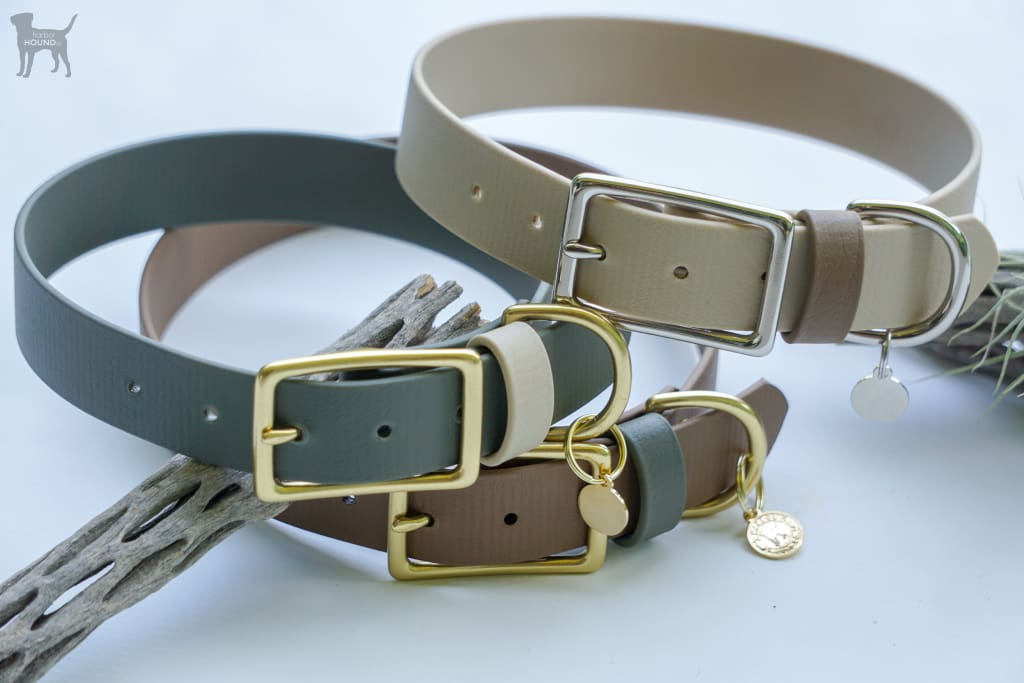 1 Acu Buckel Collar - Waterdog Collar