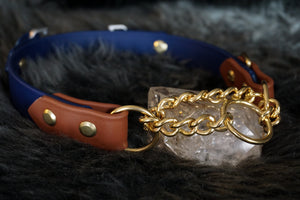 "Fi Compatible 1"" Rua Martingale Collar"
