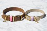 "1"" ACU Buckle Collar"