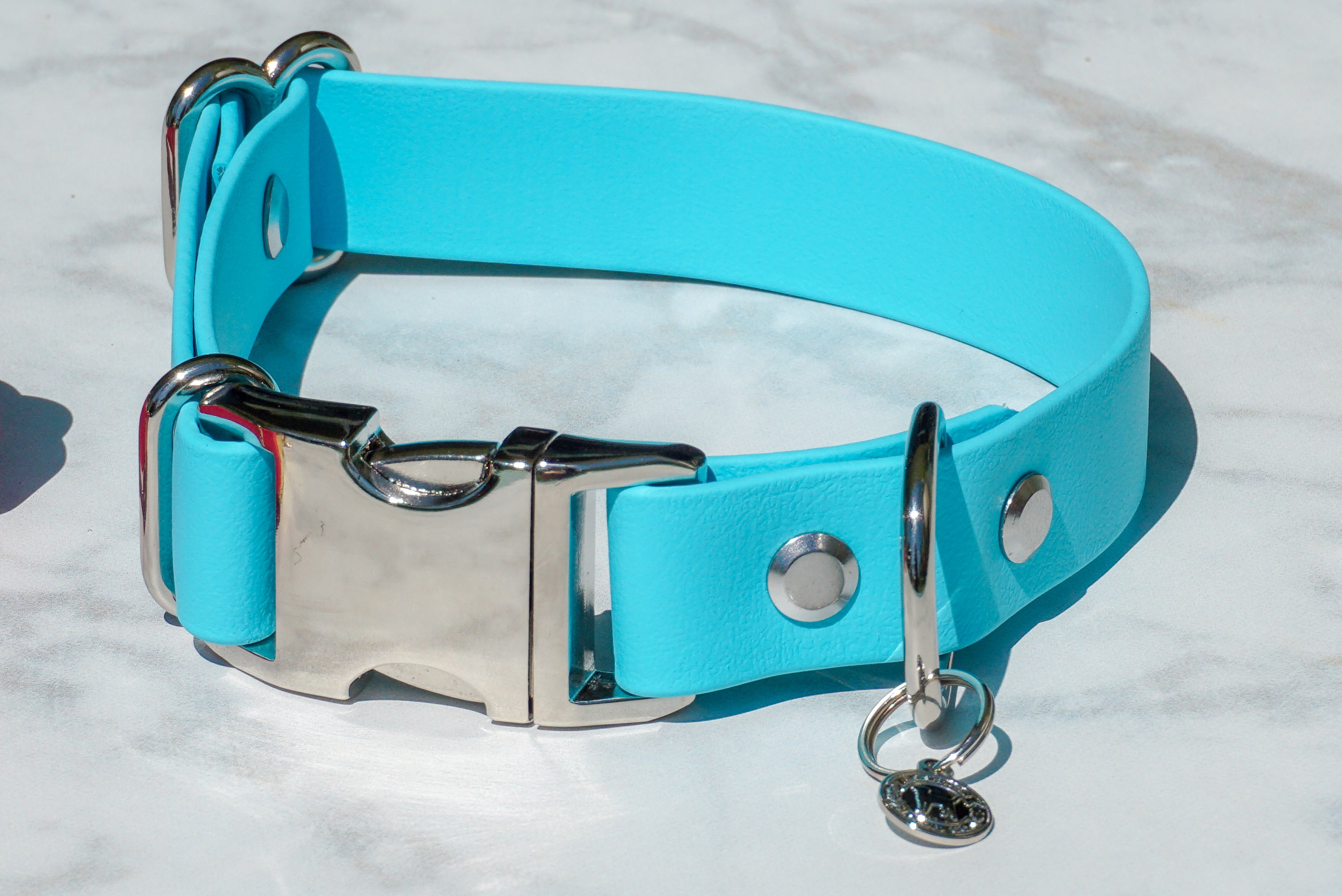 "1"" Side Release Buckle Collar"