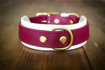 The Taliesin - Layered Buckle Collar