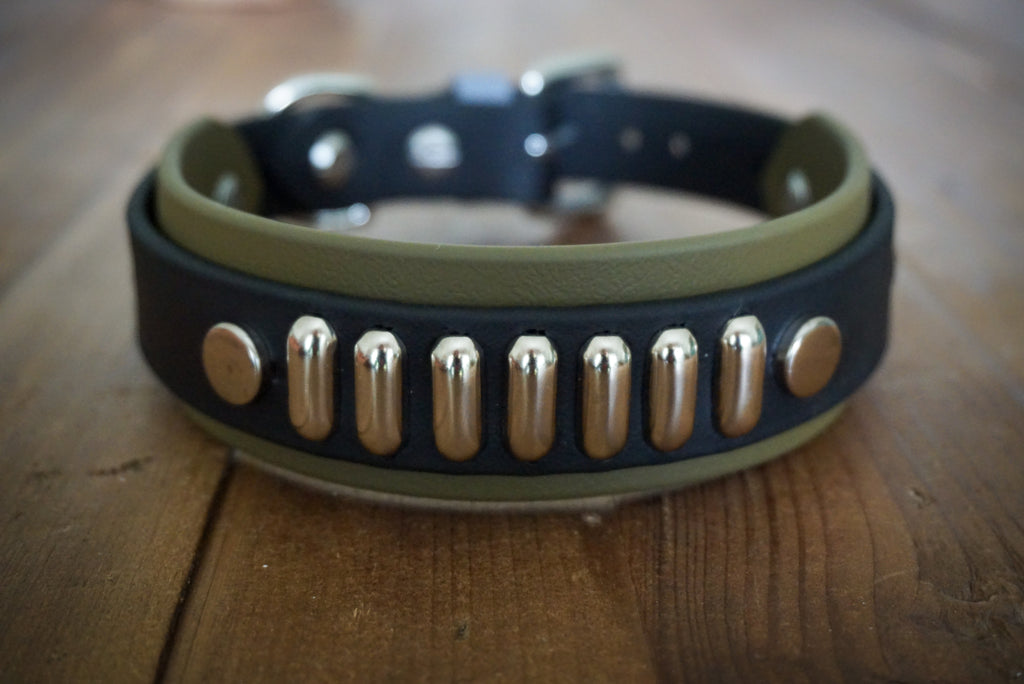 4 Paw Drive Layered Buckle Collar