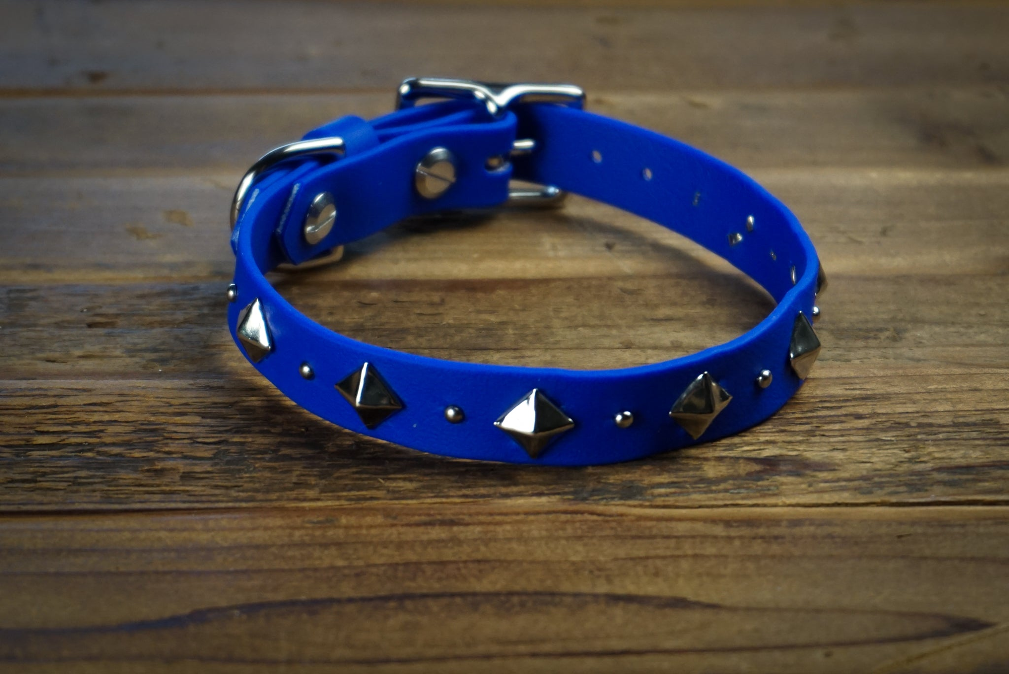 "DEOMALI 3/4"" Studded Buckle Collar"