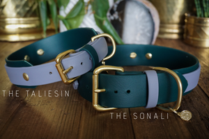 "DEOMALI Layered 1.5"" Studded Buckle Collar"
