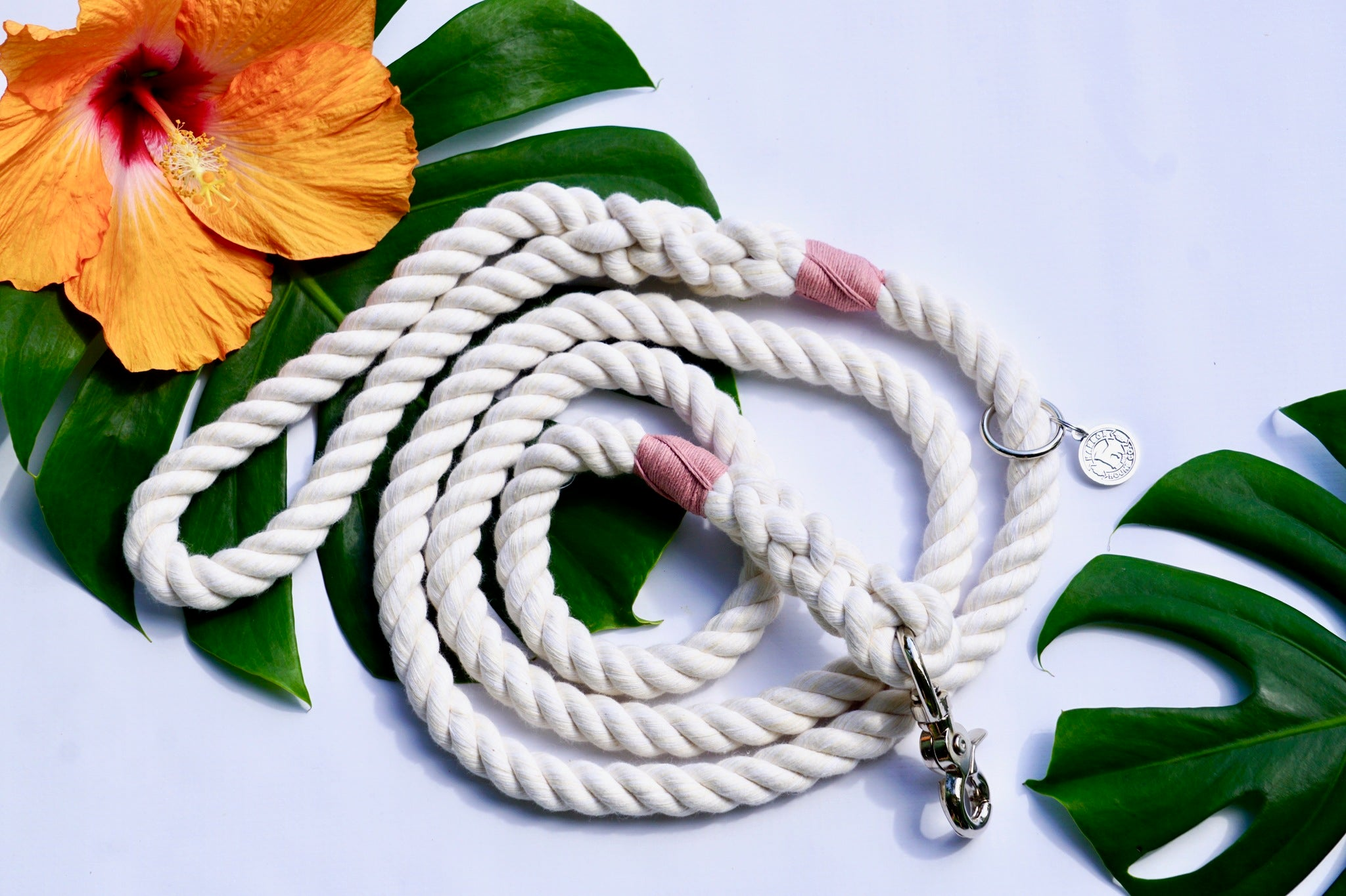 Shell Rope Dog Leash, Natural Rope