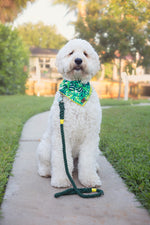Seaweed Green Cotton Rope leash